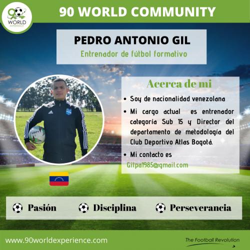 Pedro GIl Perfil Pro - 90 WE